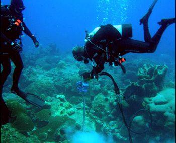 Fisheries and Marine Science