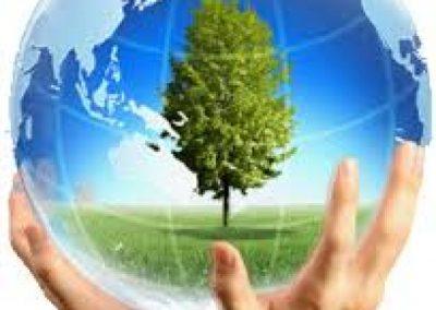 Life and Environmental Management